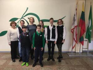 2018-03-20 Rajoninė matematikos olimpiada