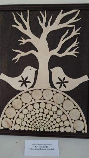 gyvybes medis, Deimantė Stripeikaitė
