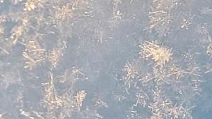 16 Sniegas 1 Dominyka Grigaitė 6c
