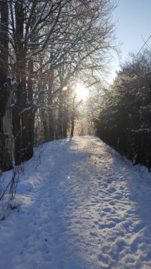 2 Sniegas kelias