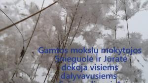 31 Sniegas Vytaute Jasmontaite pabaigai