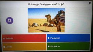 2021-04-26 Su kuo tau siejasi žodis Afrika? Pasaulio pažinimas, dailė, matematika.